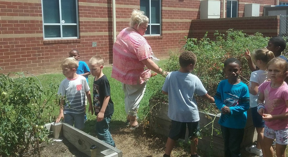 Working in the School Garden